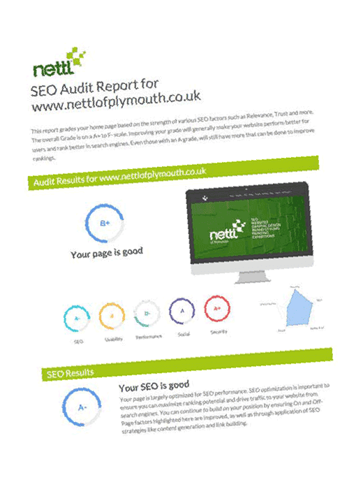 Free SEO Audit Report Example