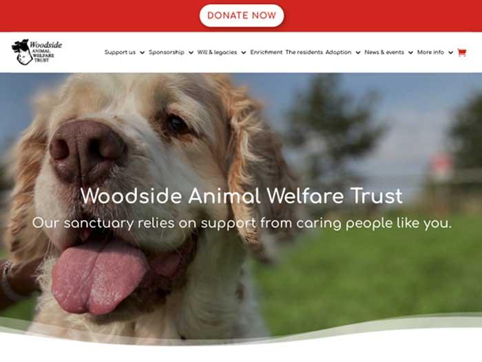 Woodside Website Design